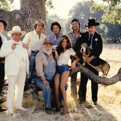 Anyone remember the Dukes of Hazzard?